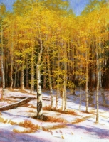 Piney Lake Aspens